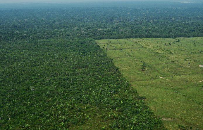 Ontbossing van het Amazonegebied op archiefbeeld uit 2017.
