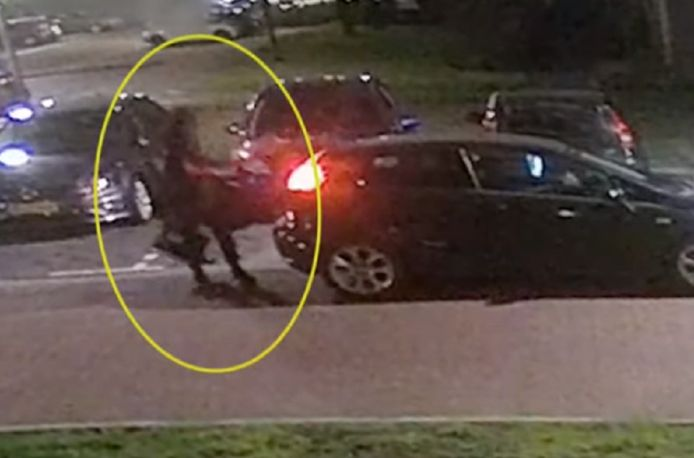 De twee verdachten van een aanslag op een Poolse supermarkt in Aalsmeer.