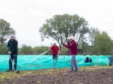 Stadsakker Veenendaal kan 'bouwen en boomgaarden' vergeten op nieuw onderkomen door ingreep gemeente