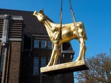 Het Gouden Kalf staat weer op de Neude