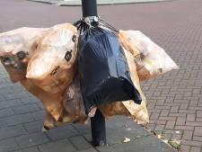 Komen de kroonringen terug in de stad Roosendaal?