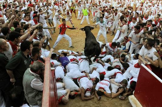 Elke dag worden om acht uur 's ochtends zes vechtstieren door de nauwe straten van Pamplona gejaagd.
