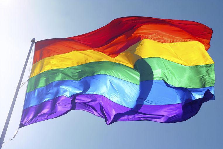De regenboogvlag. Beeld thinkstock