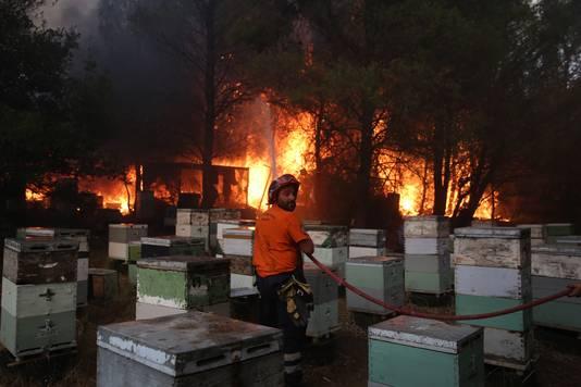 Varympompi, au nord d'Athènes (3 août)