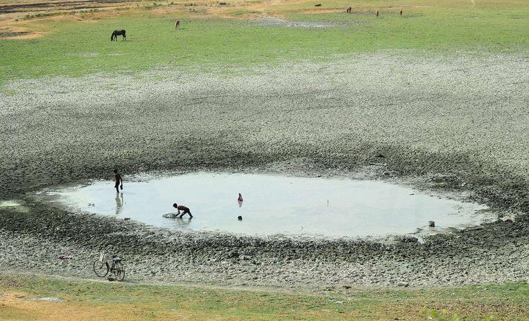 Vissers bij Allahabad proberen vis te vangen in een steeds kleiner wordende vijver. Beeld anp