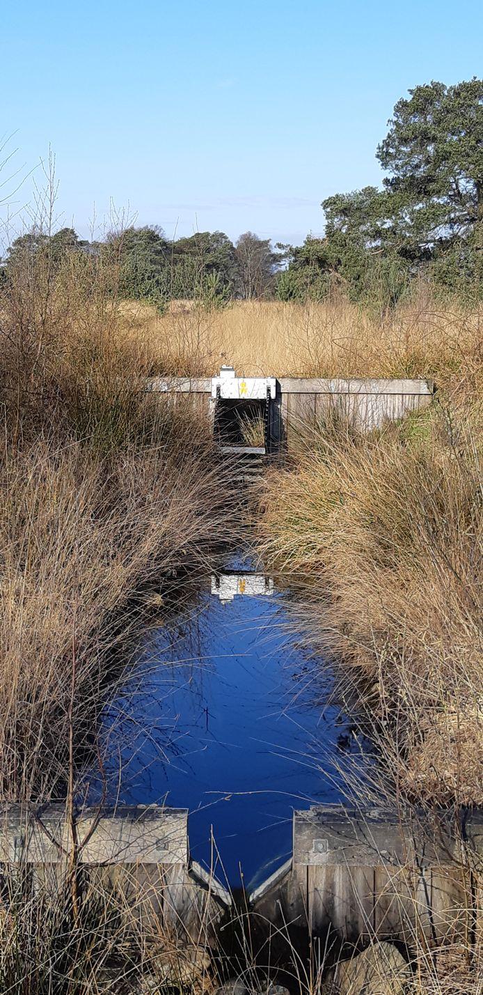De stuw aan de Dwarsdijk is een van de twee waterkeringen die de komende weken worden gerepareerd.