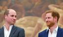William en Harry delen een geamuseerde blik, in 2018.