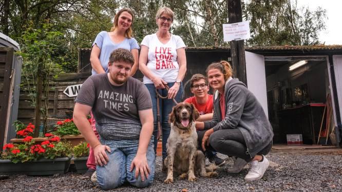 De vrijwilligers van vzw Be Happy Dog nemen intrek in voormalig dierenasiel Folyfoot