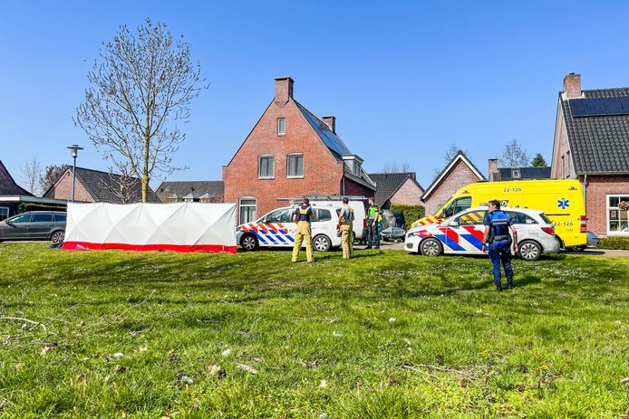 De dreumes overleefde de botsing niet, meldt de politie.