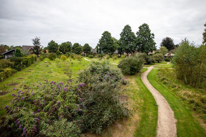 De tuin aan de Broenshof in Diepenheim is gerenoveerd. Er zijn ruim honderd nieuwe planten gepoot.