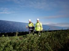 Landbouwgrond opofferen voor zonneparken? Steenbergen twijfelt