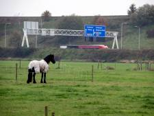 Breda krijgt groen licht voor  voorkeursrecht Bavel: 'Bezwaren omwonenden zijn normaal'