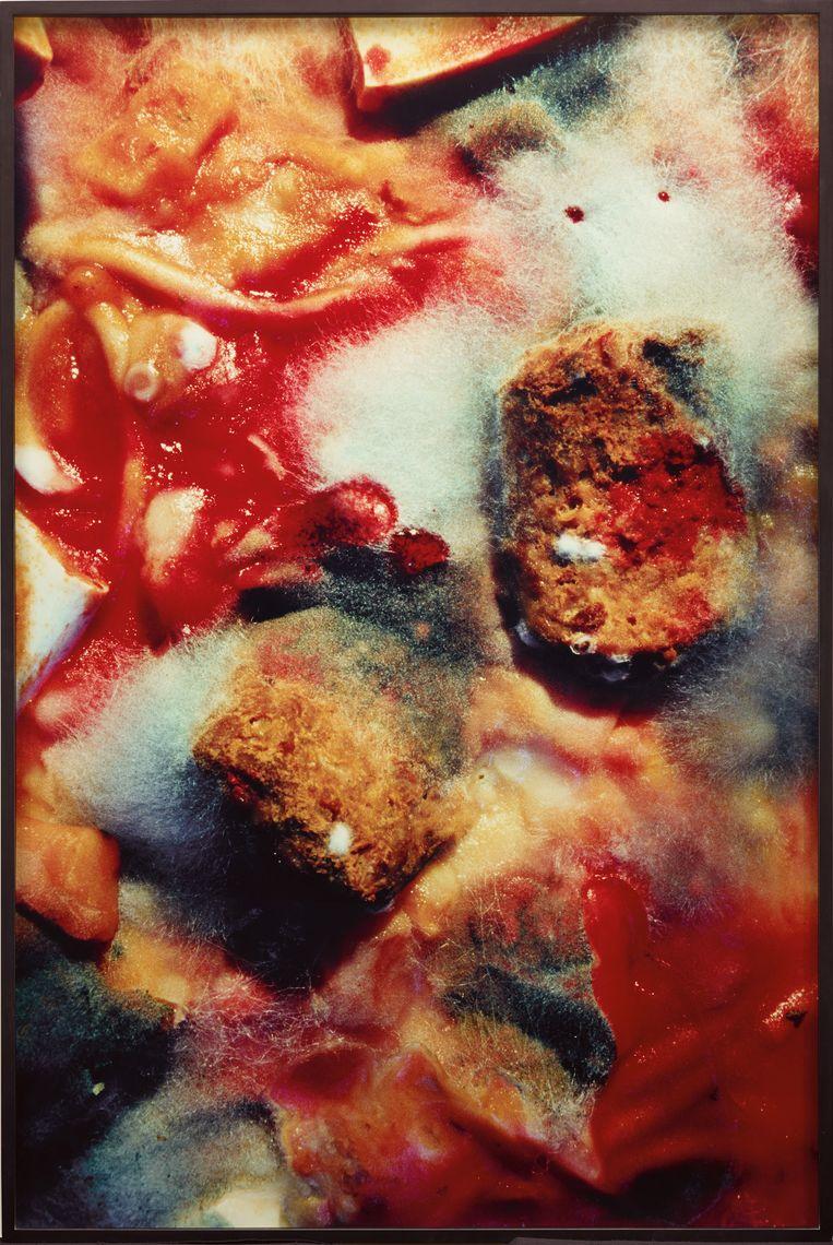 Untitled (#238), 1987-1990, van Cindy Sherman. Beeld Metro Pictures