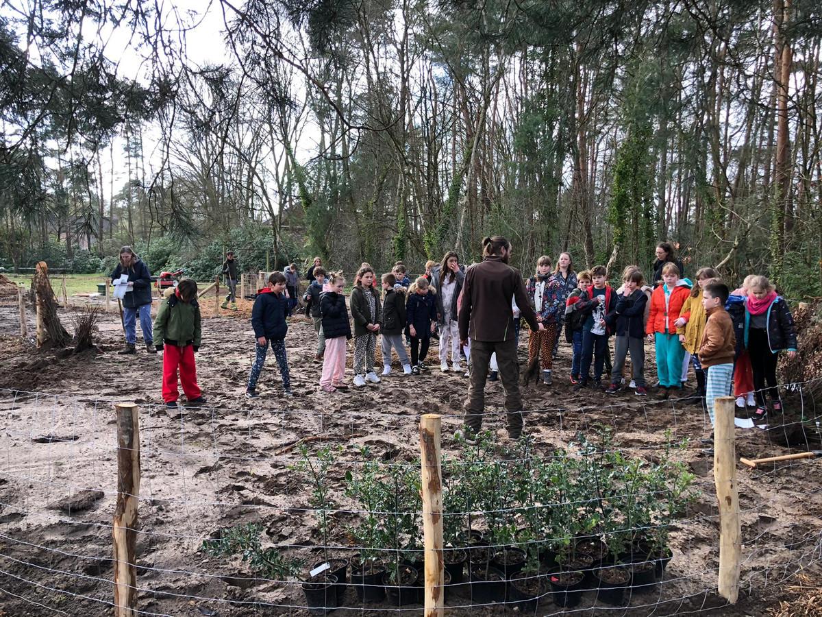 Het eerste 'tiny forest' in België werd afgelopen vrijdag aangeplant op de gronden van Campus Kajee in Schoten.