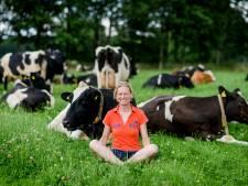 Na boerenpicknicks ook rondleidingen op boerderij in Buurse