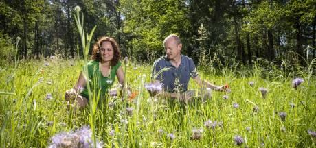 Carl en Mariël uit Beuningen springen met heideveld en bloemenwei in de bres voor de bij