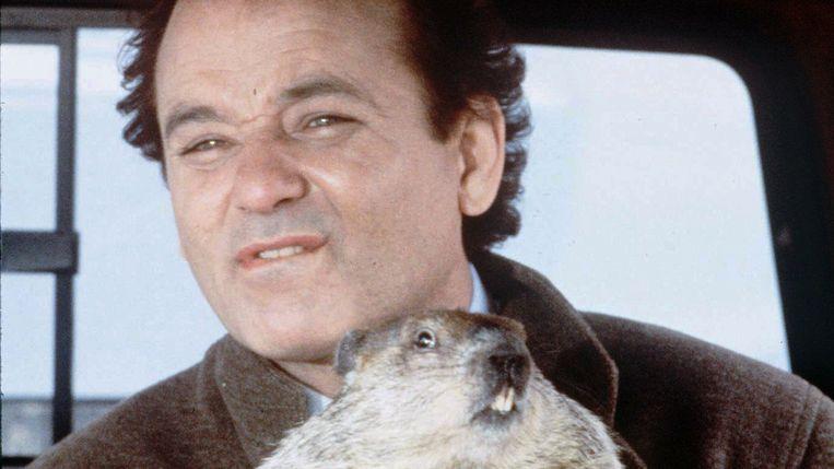 Groundhog Day Beeld