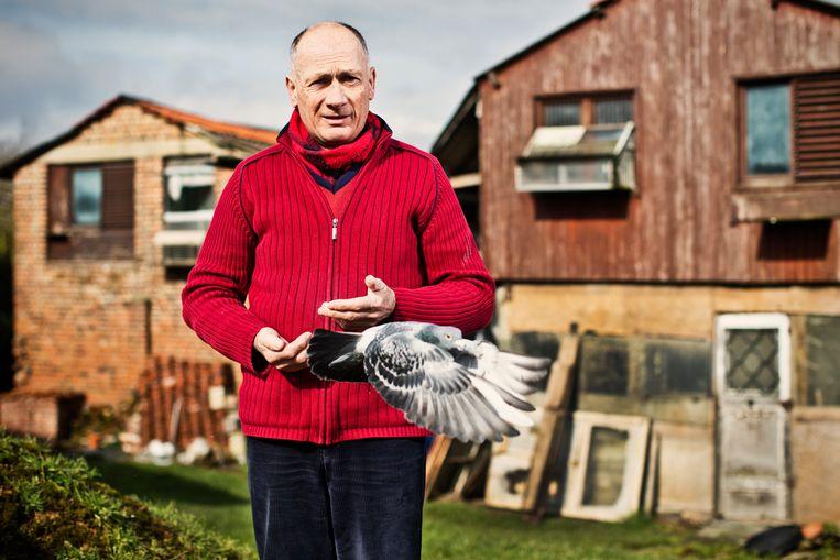 Ghislain Favaits uit Sint-Pieters-Leeuw, die leeft voor zijn duiven. Beeld jonas lampens