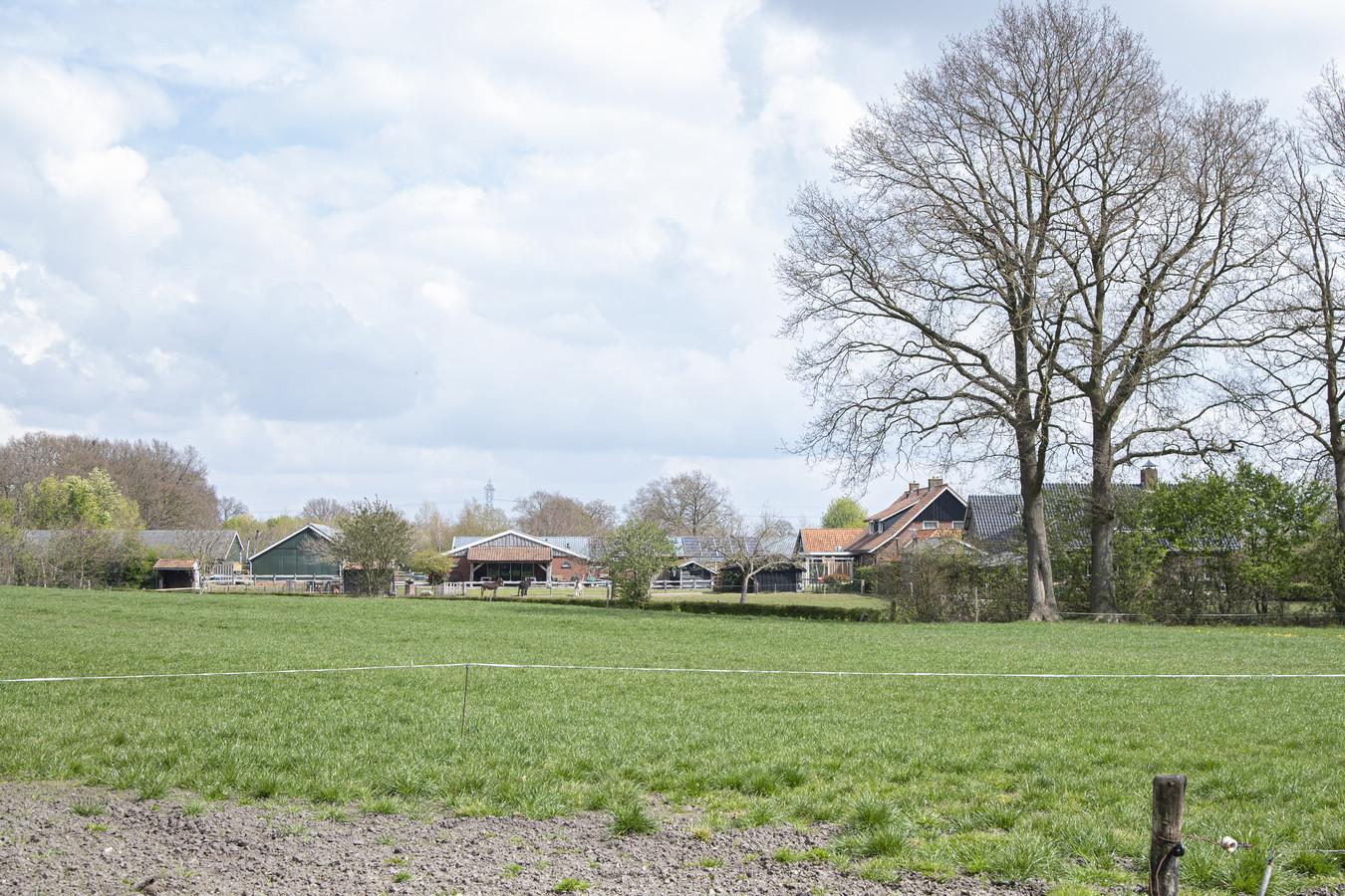 Een melkveehouder vreest, met zorgboerderij De Piet in het Enterse buitengebied, dat uitbreiding van zijn bedrijf onhaalbaar wordt.