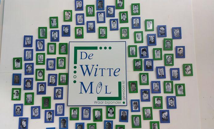 De Witte Mol in Mol.