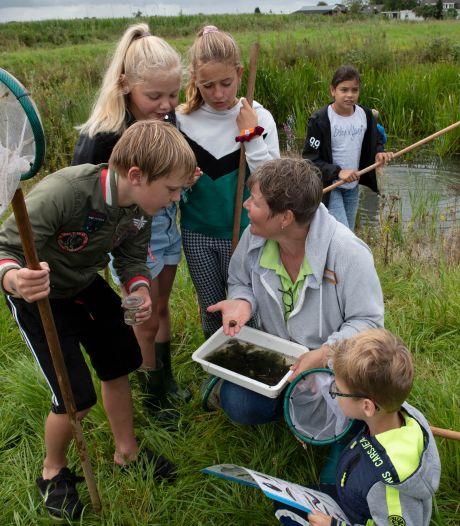 Grote poelslak of posthoornslak? 'Altijd leuk kinderen te laten zien hoeveel dieren in het water leven'