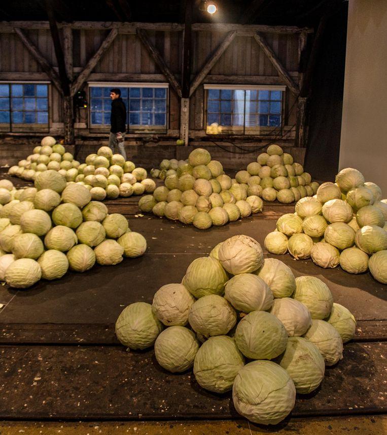 Mediamatic nam 10.000 kilo kool over van een boer die zijn overschot met geen mogelijkheid kwijt kon. Beeld Anisa Xhomaqi, Mediamatic