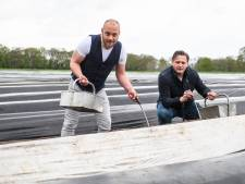 Asperges Oet Twente moet ons weer trots maken: Viergangendiner met een goed verhaal
