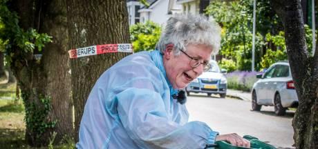 Attie (69) uit Enschede maakt korte metten met jeukrups: 'Leer ze mores met mijn verfbrander'