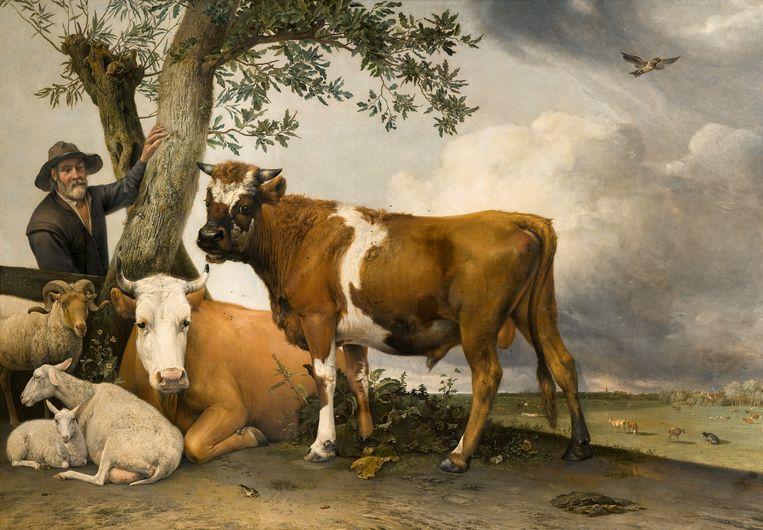 Paulus Potter, De stier, 1647. Beeld Mauritshuis, Den Haag