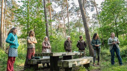 Buurt stapt naar rechtbank tegen geplande kap 7.000 bomen in Vagevuurbos
