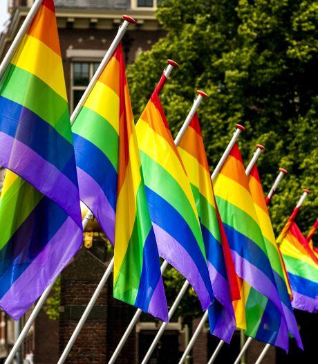Regenboogvlaggen in Den Haag uit protest tegen Hongarije: 'Hier mag iedereen zichzelf zijn'