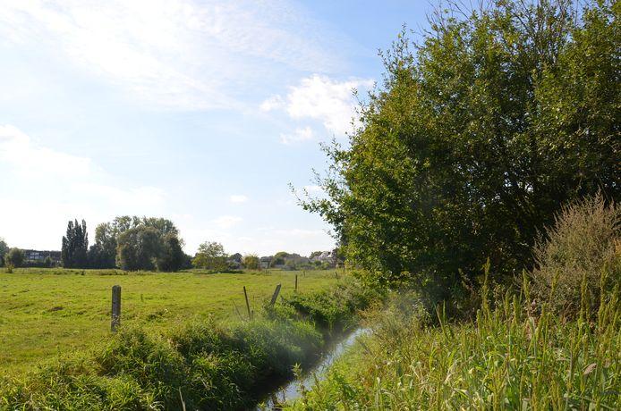 Een deel van de middeleeuwse burchtsite in Ninove die voorlopig wordt beschermd.