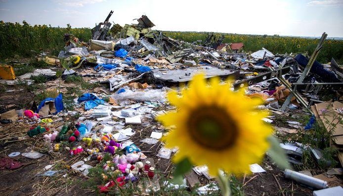 Een zonnebloem staat tussen een verzameling van wrakstukken in het rampgebied van de MH17.