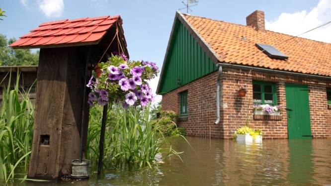 Allianz verwacht half miljard euro aan hoogwaterclaims
