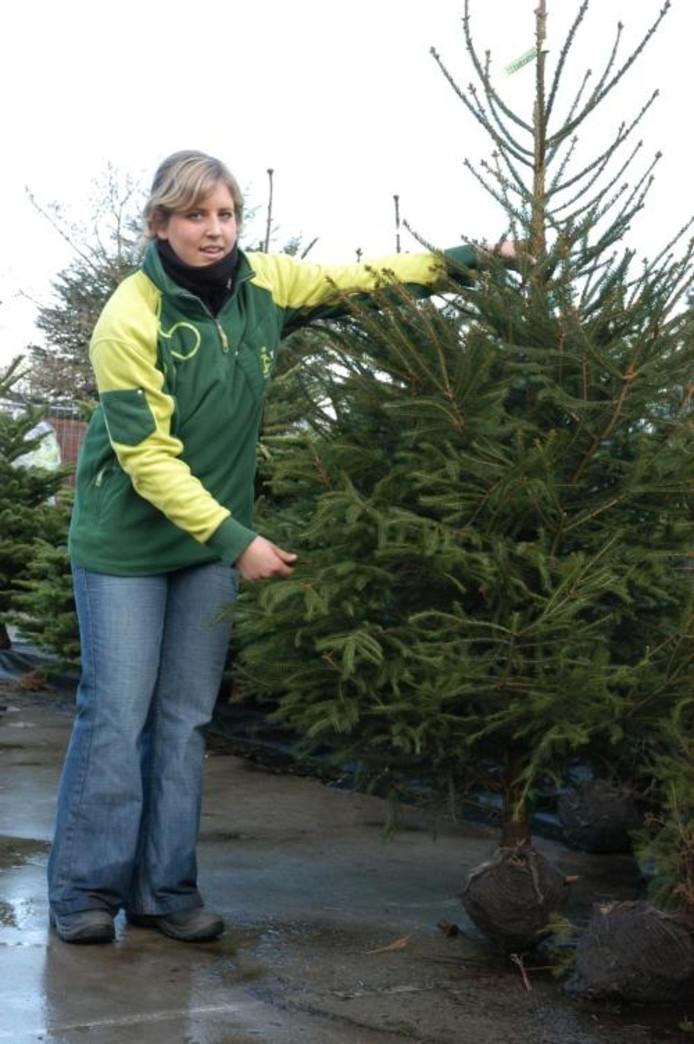 Sint De Deur Uit Kerstboom Naar Binnen Roosendaal Bndestem Nl