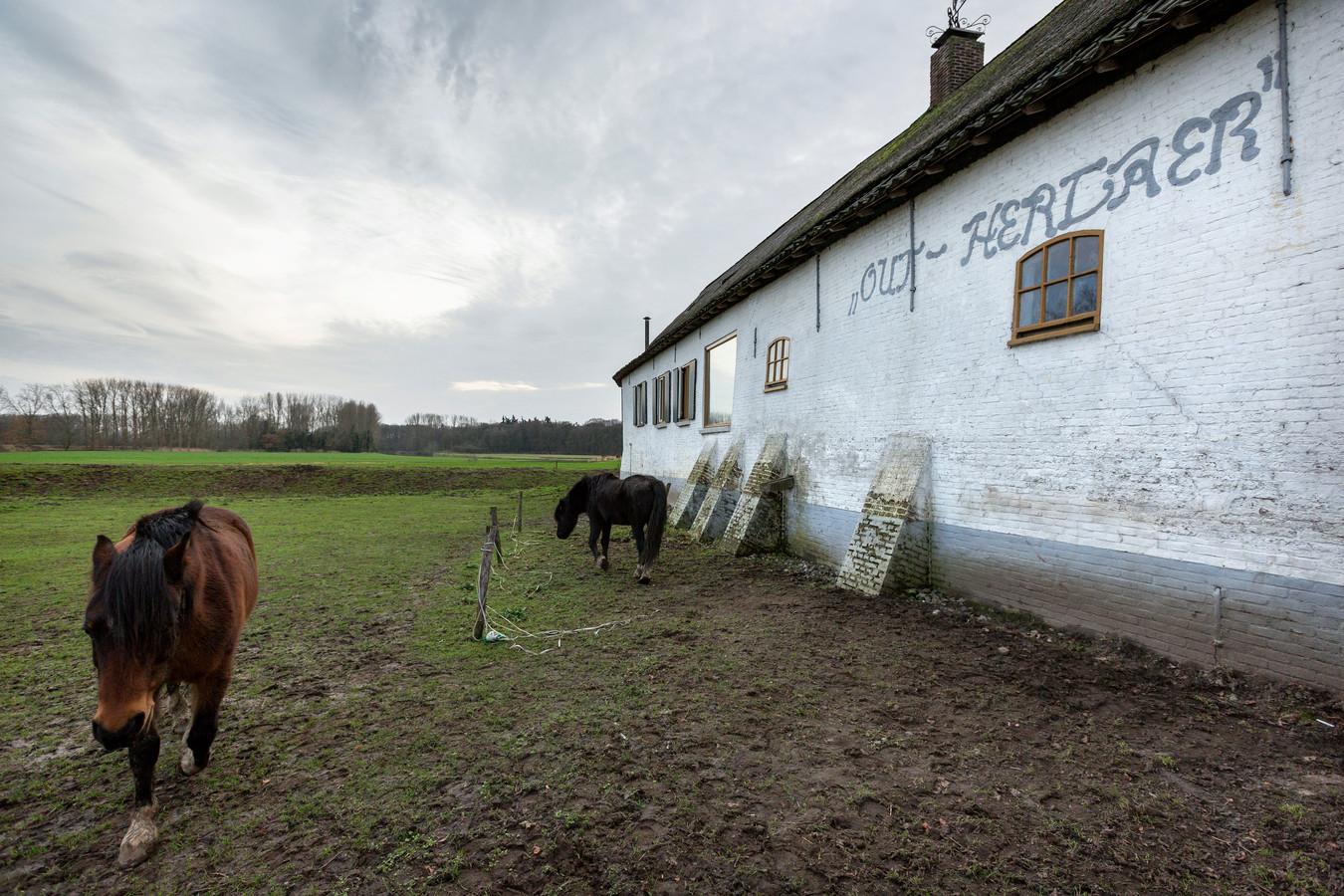 De eeuwenoude boerderij Out-Herlaer in Sint-Michielsgestel wordt onderdeel van Buiten Museum Herlaer.