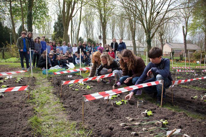 Als het aan Rotaryclub Zevenbergen ligt, komen er in de gemeente  Moerdijk ook educatieve tuinen, net zoals deze in Aardenburg.