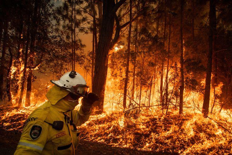 Een brandweerman overziet de vlammenzee. In Australië is intussen al meer dan 8 miljoen hectare land tot as herleid.  Beeld NYT/MATTHEW ABBOTT