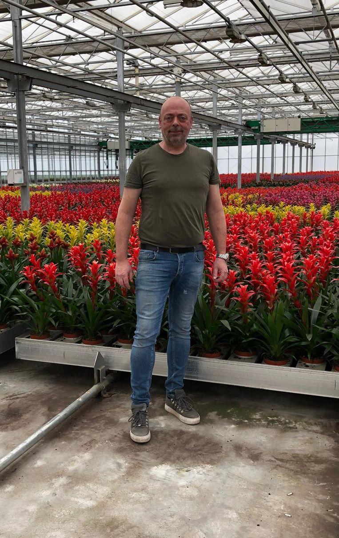 Mede-eigenaar Ab van den Berg in zijn kas. 95 procent van de planten krijgt hij niet verkocht, die worden weggegooid Beeld Ab van den Berg