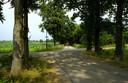 Kreiteheide in het buitengebied van Haaren.