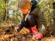 Moeder Miranda hoopt dat dochter en zoon wat opsteken van paddenstoelen bij wandeling in Nijverdal
