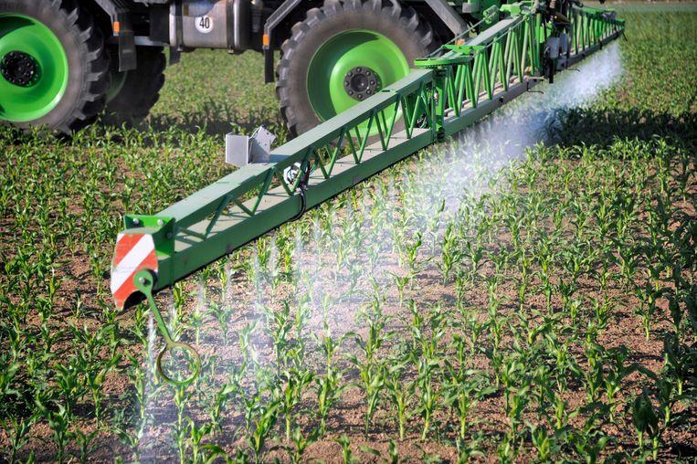 Vooral pesticiden en plastics staan te boek als producten die hormoonverstorende stoffen bevatten. Beeld Hollandse Hoogte / Flip Franssen