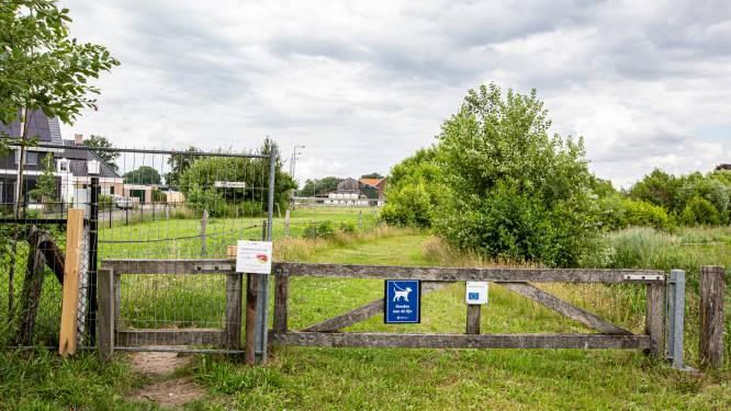 Waterschap geeft vergunning voor hekwerk bij Twentepad