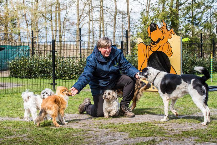 Wilmy van der Wilk van de hondenschool Honderons.