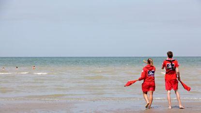Drukke zomer voor de strandredders:  412 interventies voor zwemmers in nood