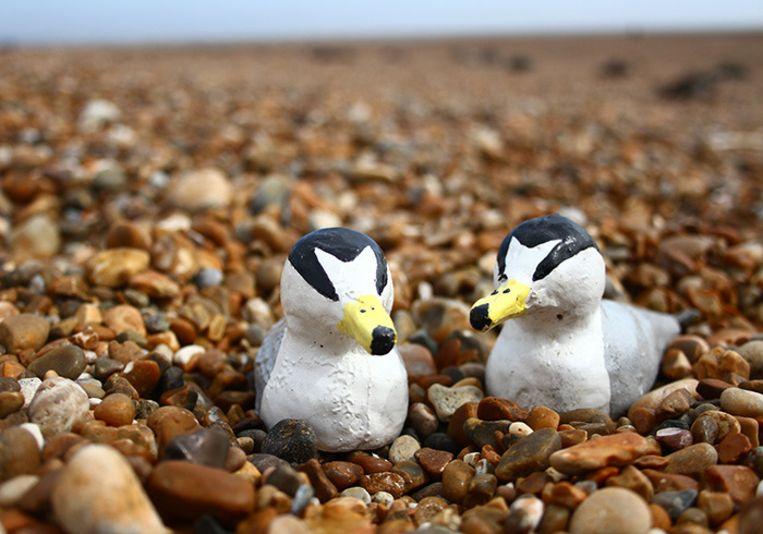 Deze test-modellen werden gebruikt op het strand in Suffolk. Beeld RSPB