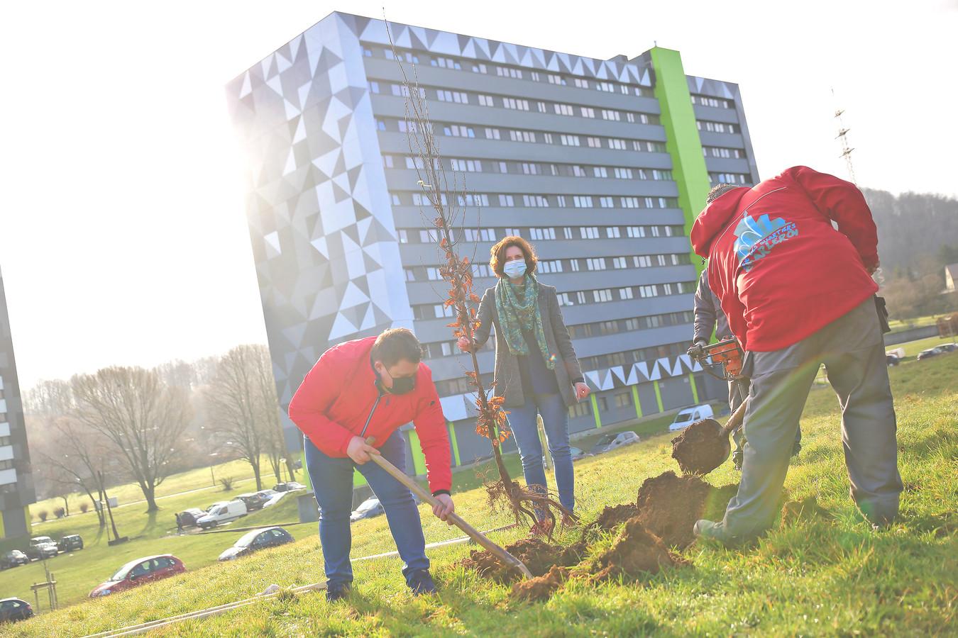 L'Échevine du Logement de la Ville de Charleroi, Laurence Leclercq, était aux premières loges pour assister à la plantation d'arbres à la Cité Parc de Marcinelle