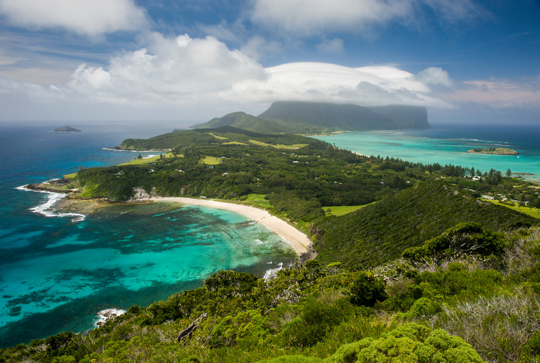 Op het afgelegen Australische eiland Lord Howe is al twee jaar geen muis of rat meer gezien.