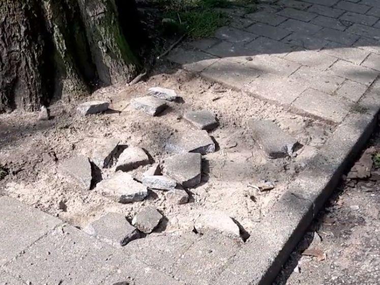 De Vijverberg, the day after: rellen richtten flink wat schade aan