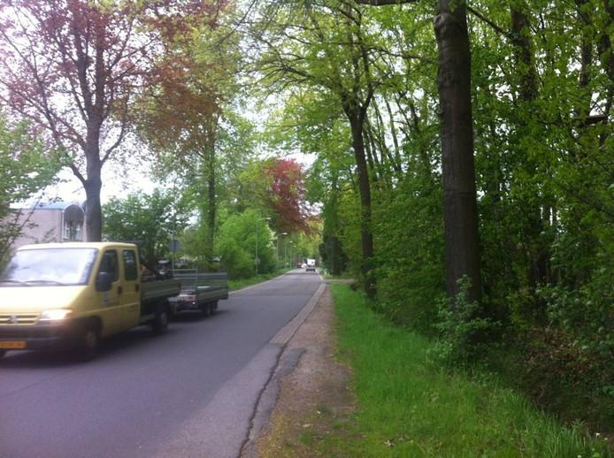 De Bataafseweg ten oosten van Winterswijk: geen mast van T-Mobile.